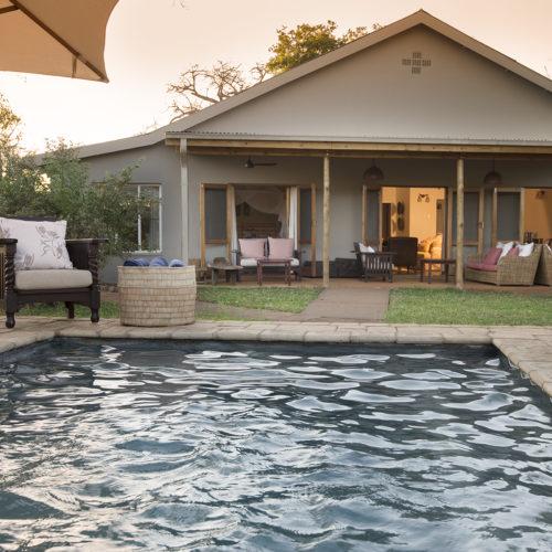 Safari bush house swimming pool