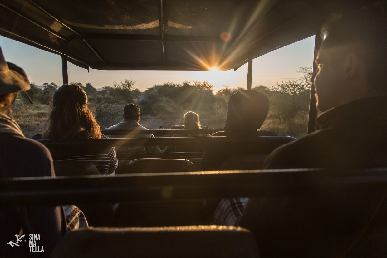 Pafuri Camp Guests on Game Drive