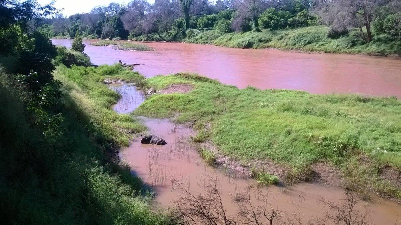 Luvuvhu River Banks