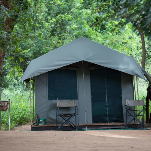 Bush Tracker - Small safri tent accommodation