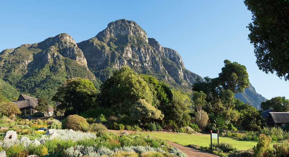 Kirstenbosch Botanical Gardens 3284080 960 720