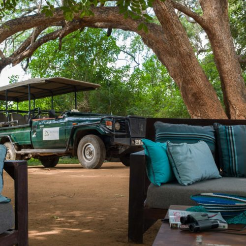 Pafuri safari game drive stop