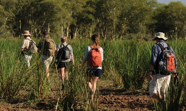 Pafuri Walking Trails in Tourism Update