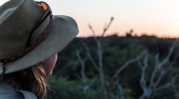 Safari Guides Sighting Report December 2017