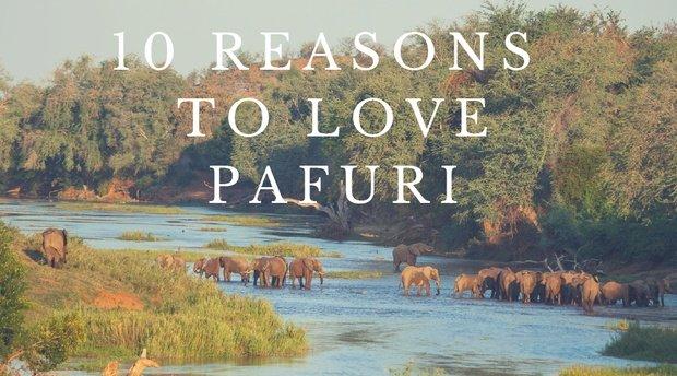10 Reasons to Love Pafuri Northern Kruger